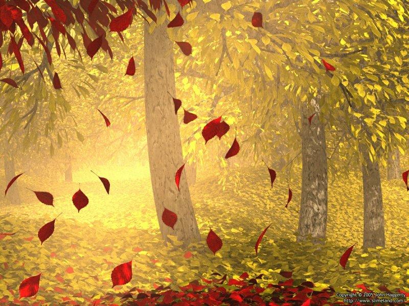 Autumn detail 2